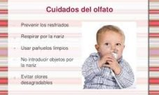 ¿Cómo cuidar el olfato? Para niños